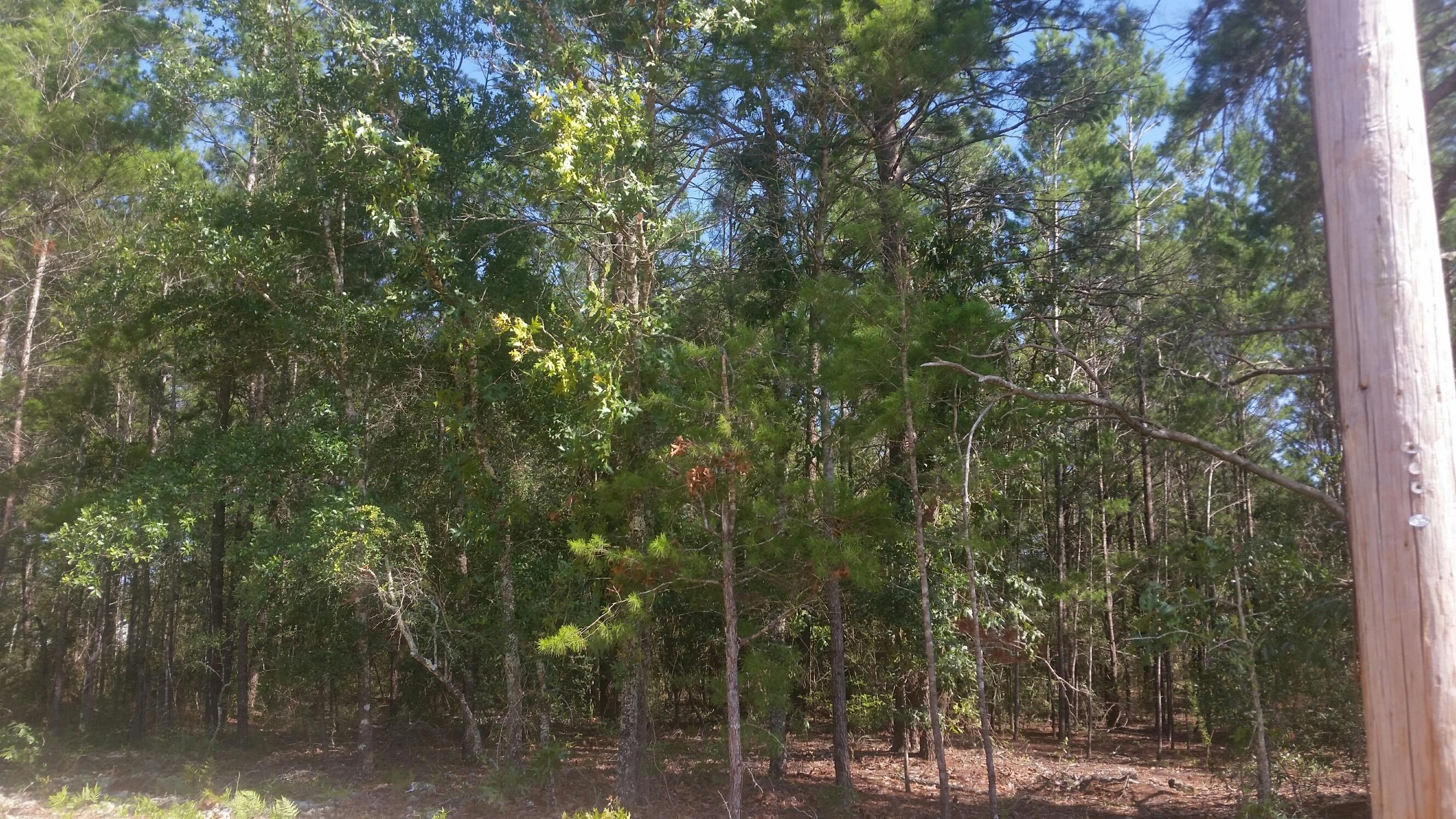 Photo of home for sale at Lot 1 Violet, Defuniak Springs FL