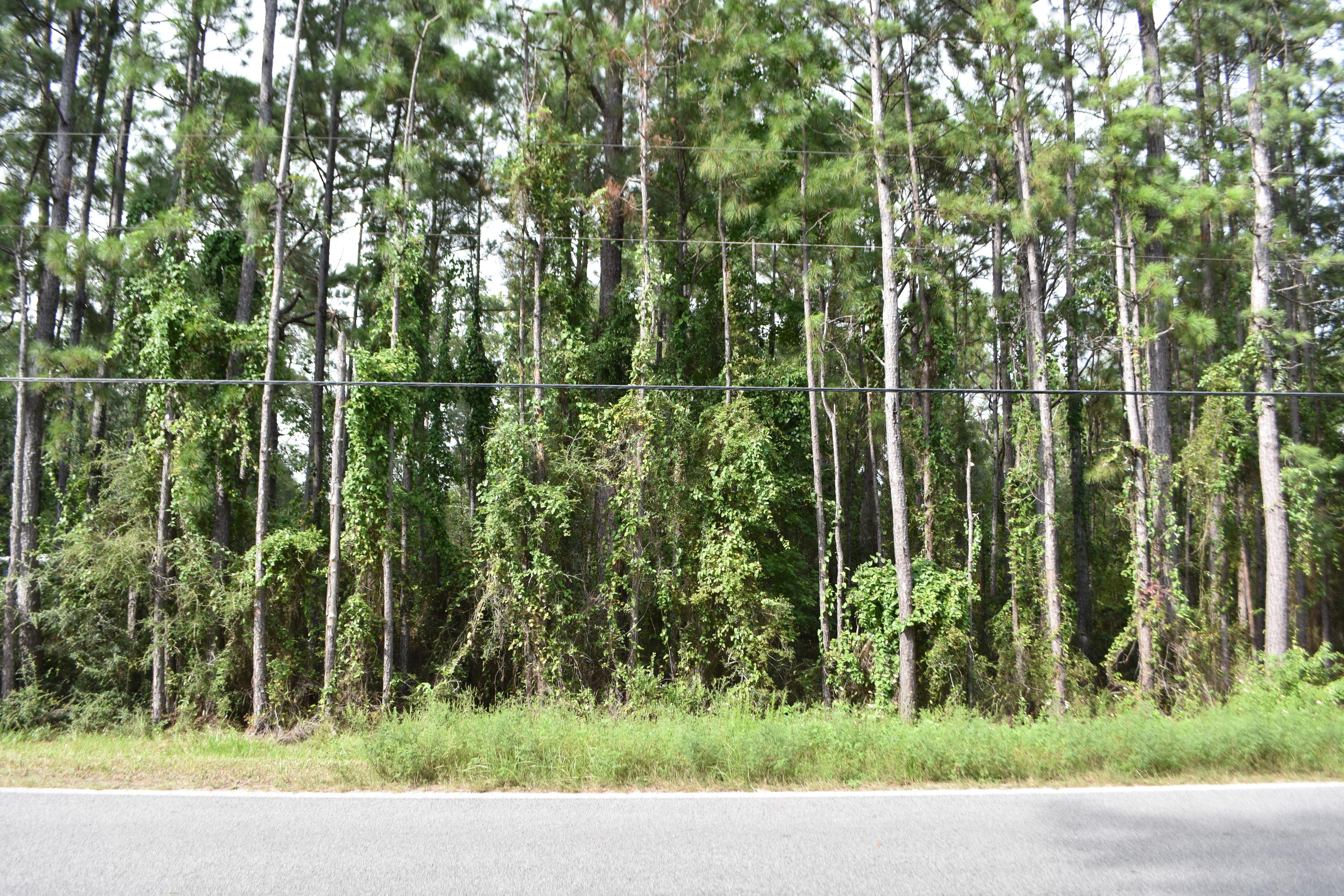 Photo of home for sale at XXXX Black Creek, Freeport FL