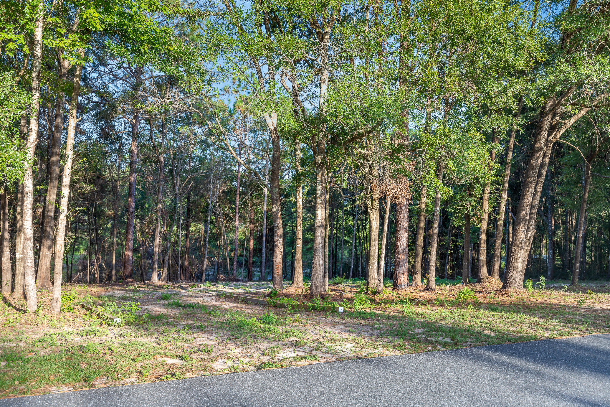 Photo of home for sale at 000 Windsor, Crestview FL