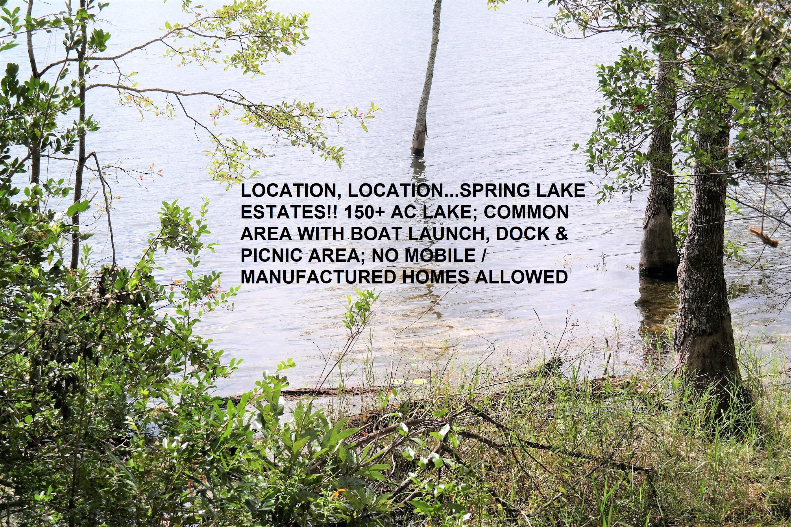 Photo of home for sale at Lot17 Spring Lake, Defuniak Springs FL