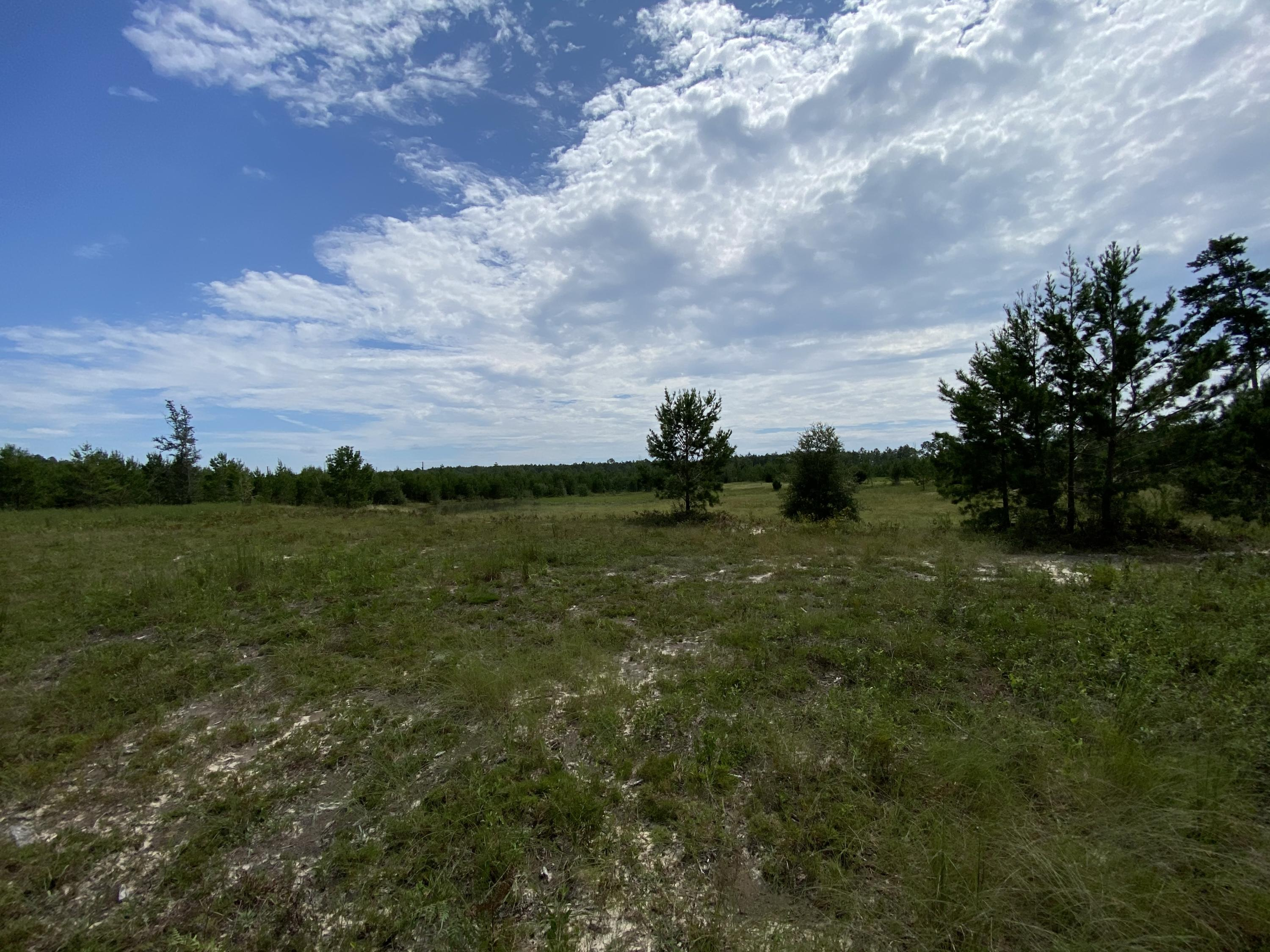 Photo of home for sale at 6.43 AC Outlook, Milton FL
