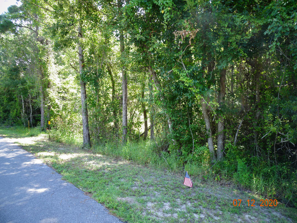 Photo of home for sale at 0 Pisces, Santa Rosa Beach FL