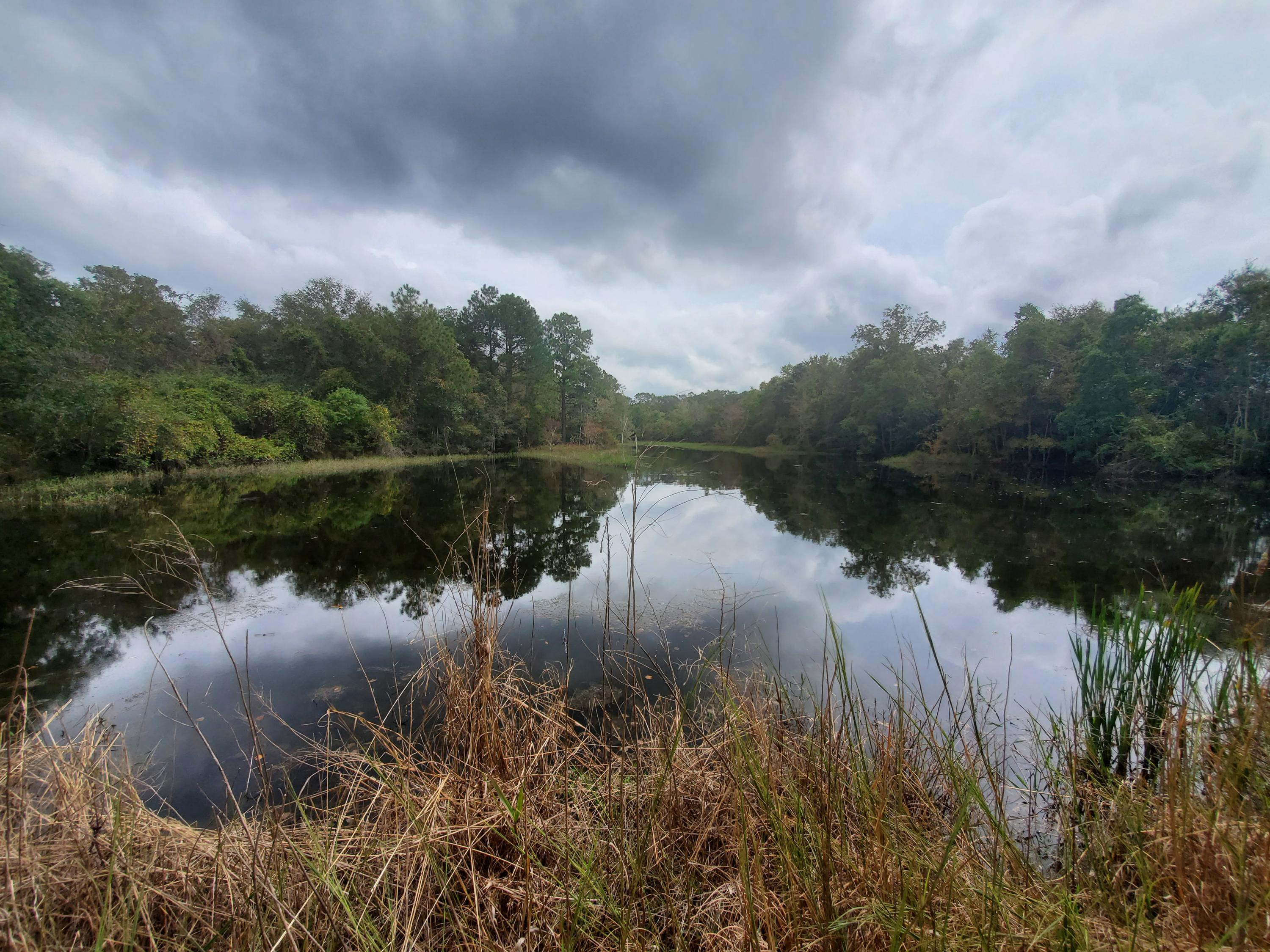 Photo of home for sale at 65 Acres Us Highway 331, Defuniak Springs FL