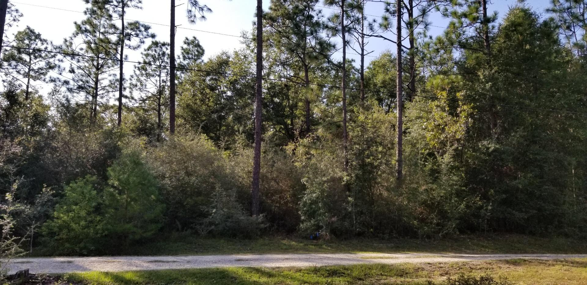 Photo of home for sale at 25 Ac Dogwood, Crestview FL
