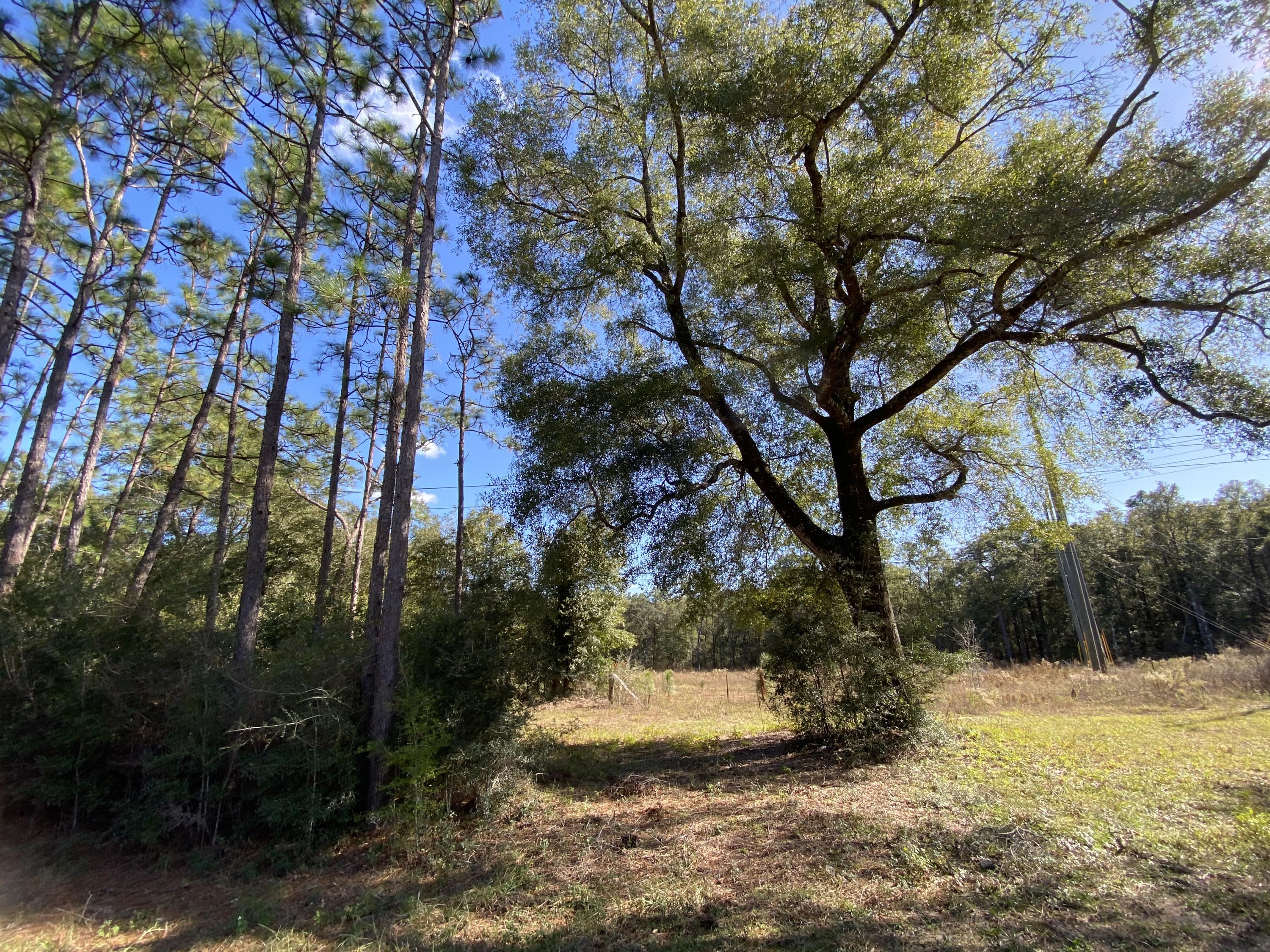 Photo of home for sale at XXX-A Hwy 90, Baker FL