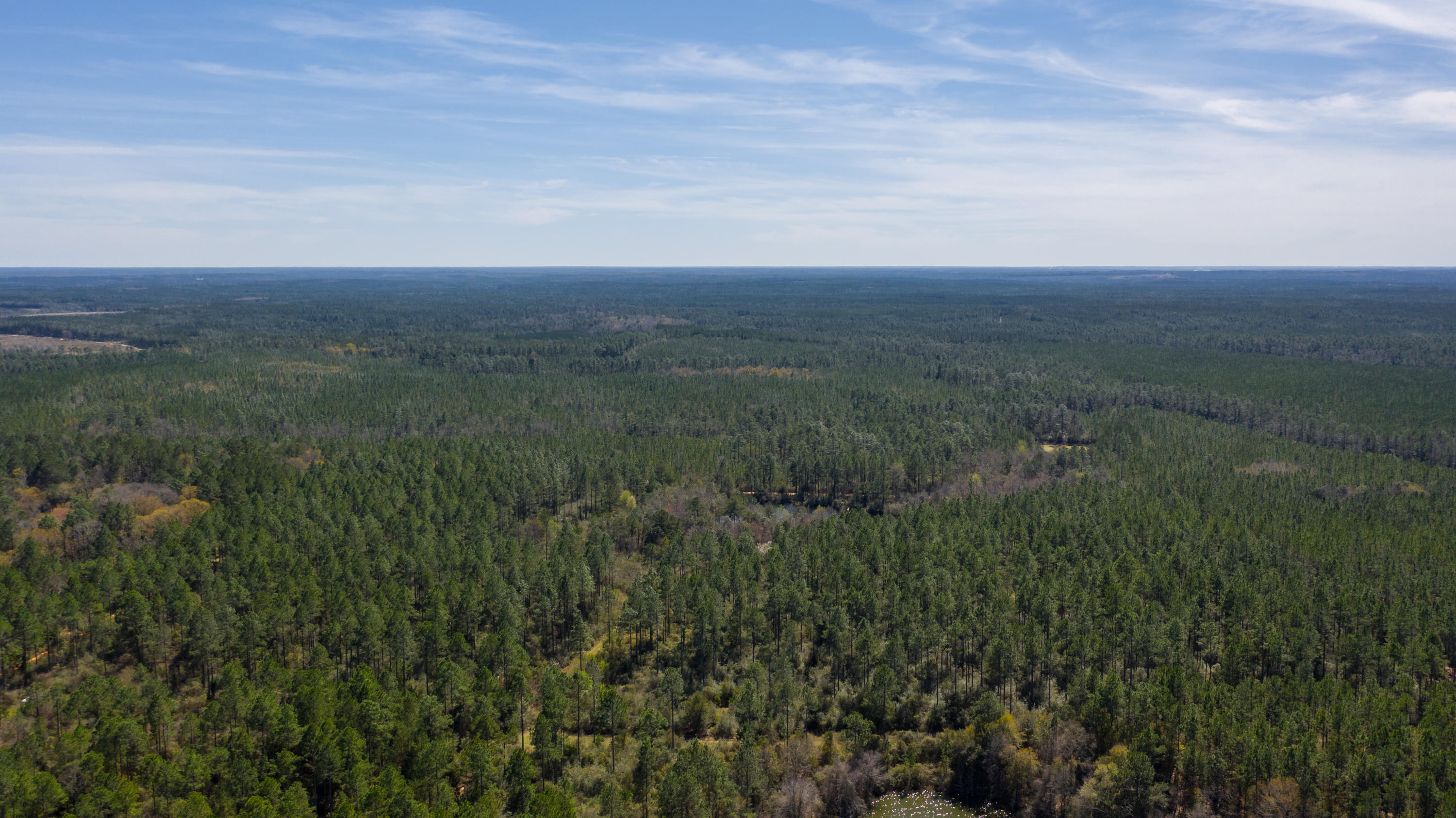 Photo of home for sale at 20 B ACRES Buck Tyner, Laurel Hill FL