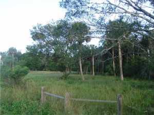 أراضي للـ Sale في Carlton Road Carlton Road Port St. Lucie, Florida 34987 United States