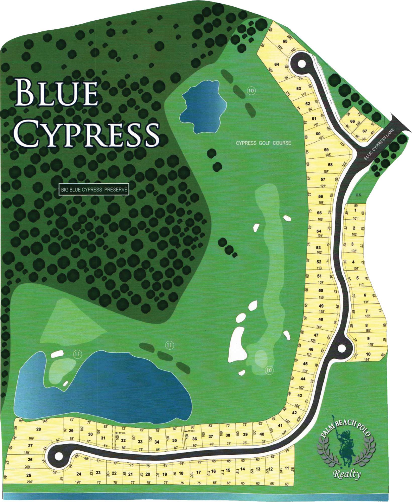 2821 Blue Cypress Lane Wellington, FL 33414 photo 2