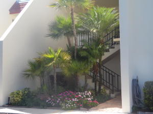 Lands Of The President