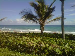 Coronado At Highland Beach Condo