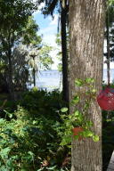 Single Family Home for Sale at 6117 County Rd 209 Green Cove Springs, Florida 32043 United States
