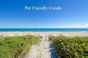 Beach Point Condo