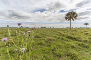 Land for Sale at SW Hosanah Lane SW Hosanah Lane Okeechobee, Florida 34974 United States