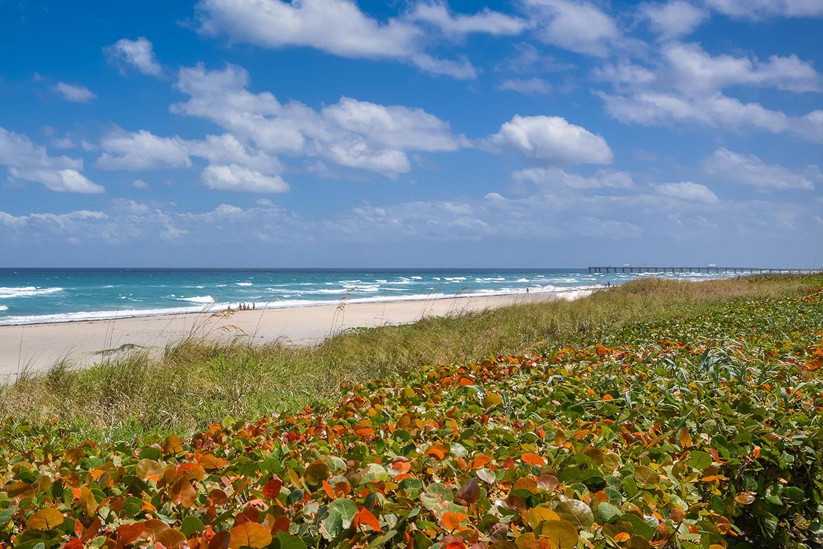 BEACH POINT COND  UNIT 205-S