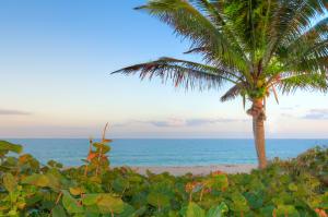 Appartement en copropriété pour l à louer à 5801 N Ocean Boulevard Ocean Ridge, Florida 33435 États-Unis