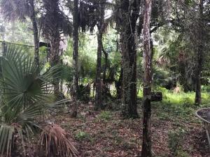 Casa Unifamiliar por un Venta en 8660 Thousand Pines Circle 8660 Thousand Pines Circle West Palm Beach, Florida 33411 Estados Unidos