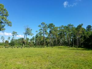 Land for Sale at 14301 Okeechobee Boulevard 14301 Okeechobee Boulevard Loxahatchee Groves, Florida 33470 United States