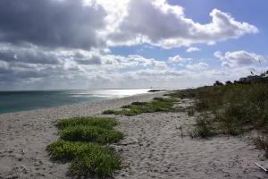 Jupiter Inlet Beach Colony
