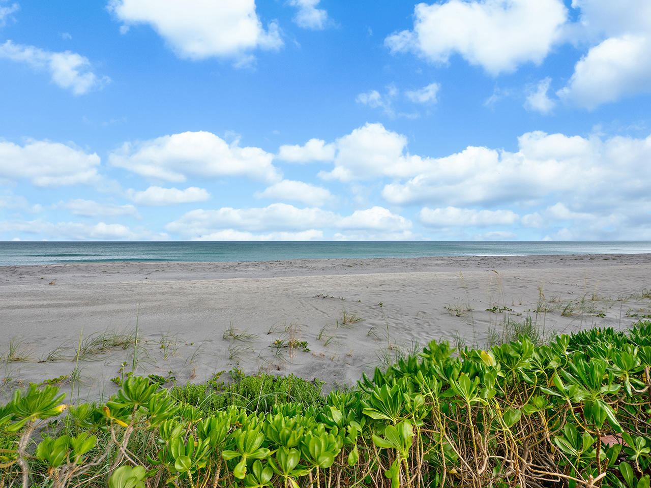 JUPITER ISLAND HOBE SOUND FLORIDA