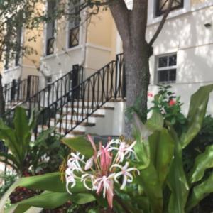 联栋屋 为 出租 在 75 NE 5th Avenue 75 NE 5th Avenue 德尔雷比奇海滩, 佛罗里达州 33483 美国