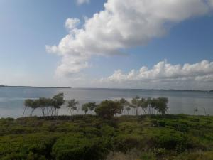 Additional photo for property listing at 26 Harbour Isle Drive 26 Harbour Isle Drive Hutchinson Island, Florida 34949 Estados Unidos
