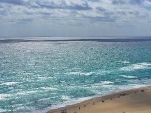 شقة بعمارة للـ Rent في Tiara, 3000 N Ocean Drive 3000 N Ocean Drive Singer Island, Florida 33404 United States