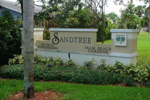 Sandtree