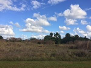 Terrain pour l Vente à 8237 Hwy 441 8237 Hwy 441 Okeechobee, Florida 34972 États-Unis