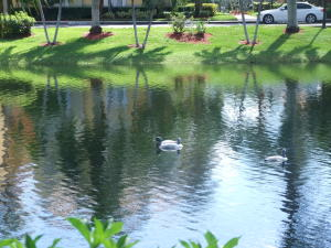 Additional photo for property listing at 11027 Legacy Boulevard 11027 Legacy Boulevard Palm Beach Gardens, Florida 33410 United States