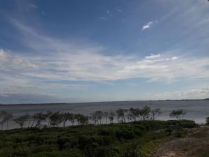 Eigentumswohnung für Mieten beim 28 Harbour Isle Drive 28 Harbour Isle Drive Hutchinson Island, Florida 34949 Vereinigte Staaten