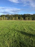 Paddock Park 2