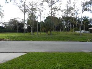 Meadow Wood