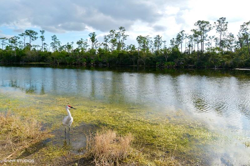 10256 Orchid Reserve Drive 8b West Palm Beach, FL 33412 photo 9