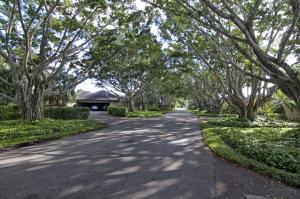 2735  Polo Island Drive K102 For Sale 10394435, FL