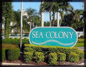 Sea Colony