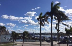 Yacht Club Towers Condo
