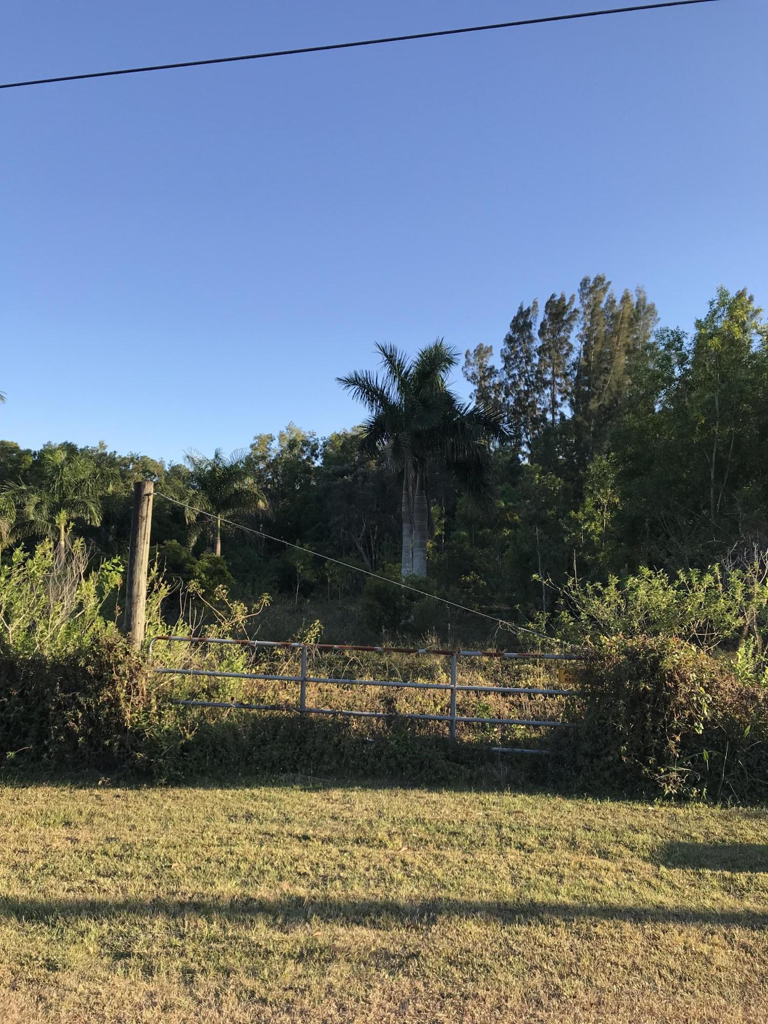 . 59th Court Royal Palm Beach, FL 33411 photo 3