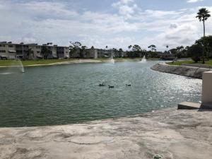 Lake Clarke Gardens Condo 21