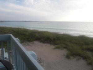 Palm Haven
