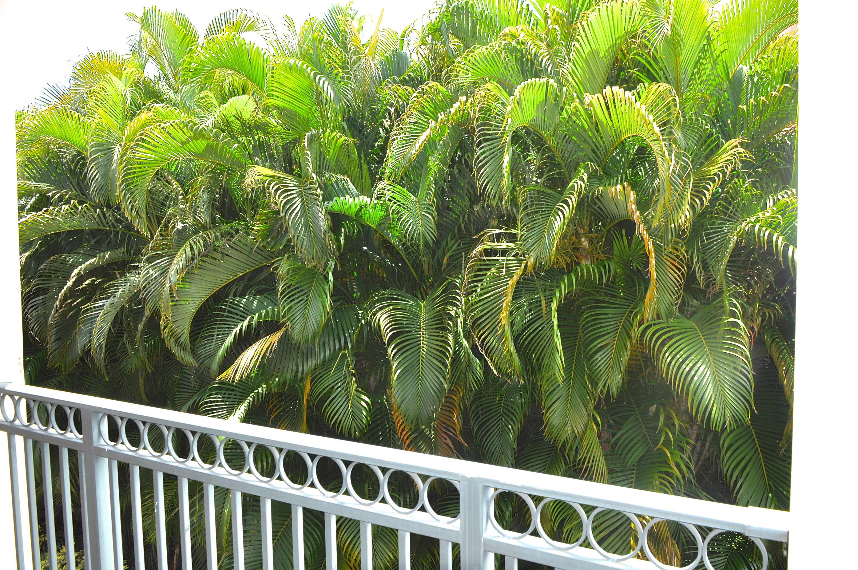11775 St Andrews Place 106 Wellington, FL 33414 photo 16