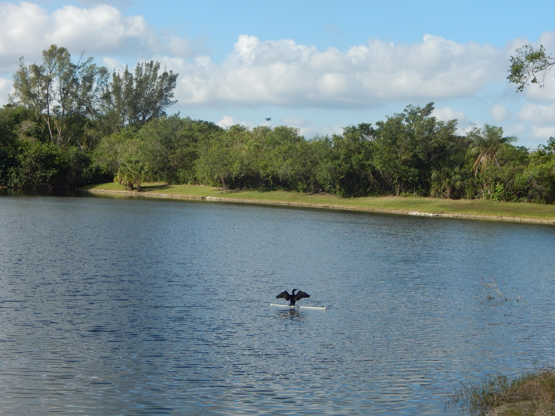 5804 Fox Hollow Drive C Boca Raton, FL 33486 photo 32