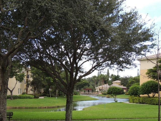 800 Crestwood Court 809 Royal Palm Beach, FL 33411 photo 26