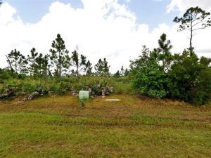 Sabal Creek Phase 1
