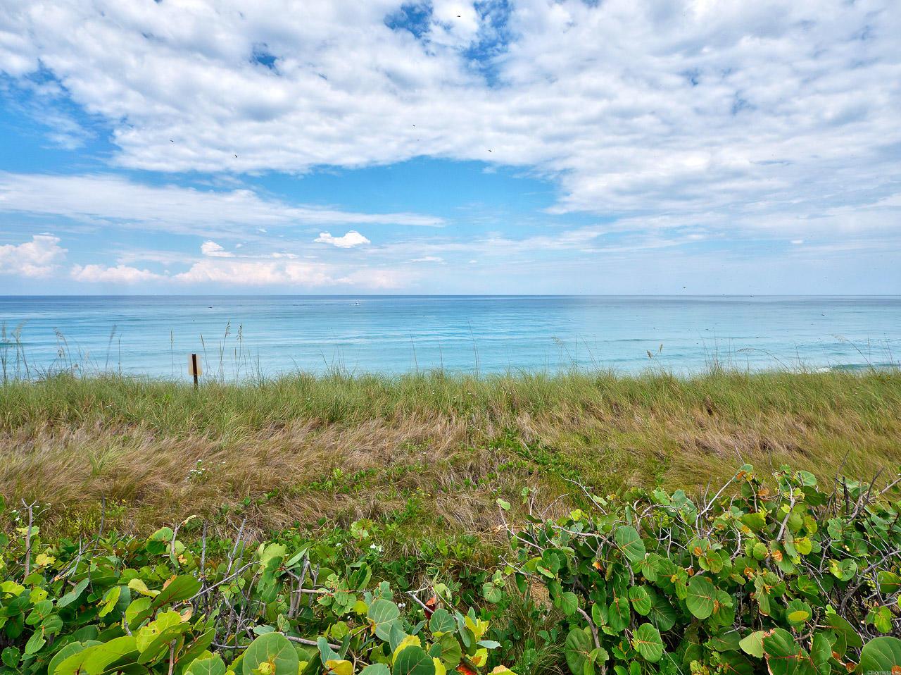 REACHES SINGER ISLAND FLORIDA