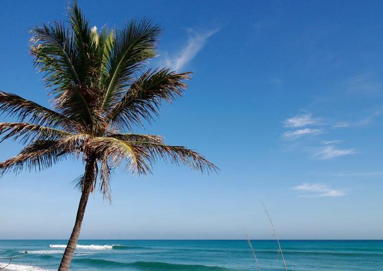 8435 Belize Place Wellington, FL 33414 photo 55