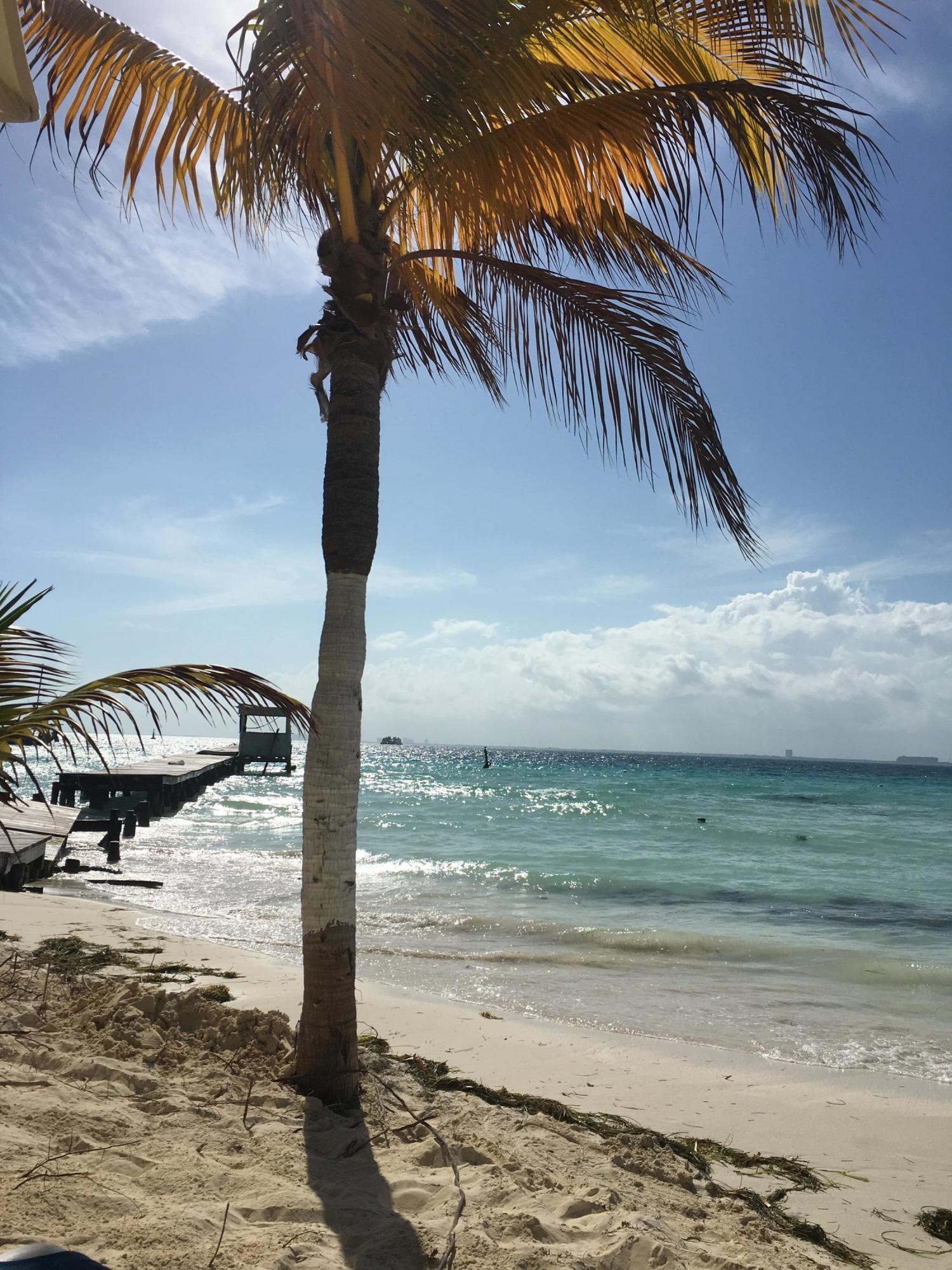 8435 Belize Place Wellington, FL 33414 photo 59