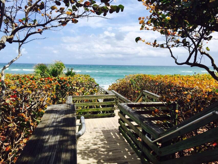 8435 Belize Place Wellington, FL 33414 photo 64