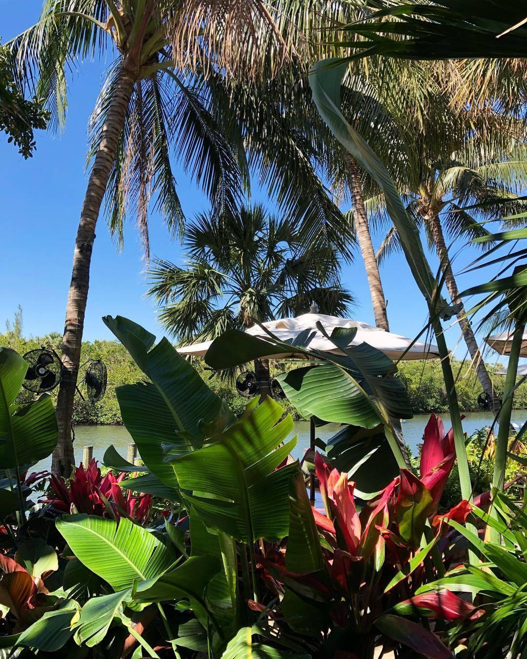 8435 Belize Place Wellington, FL 33414 photo 67