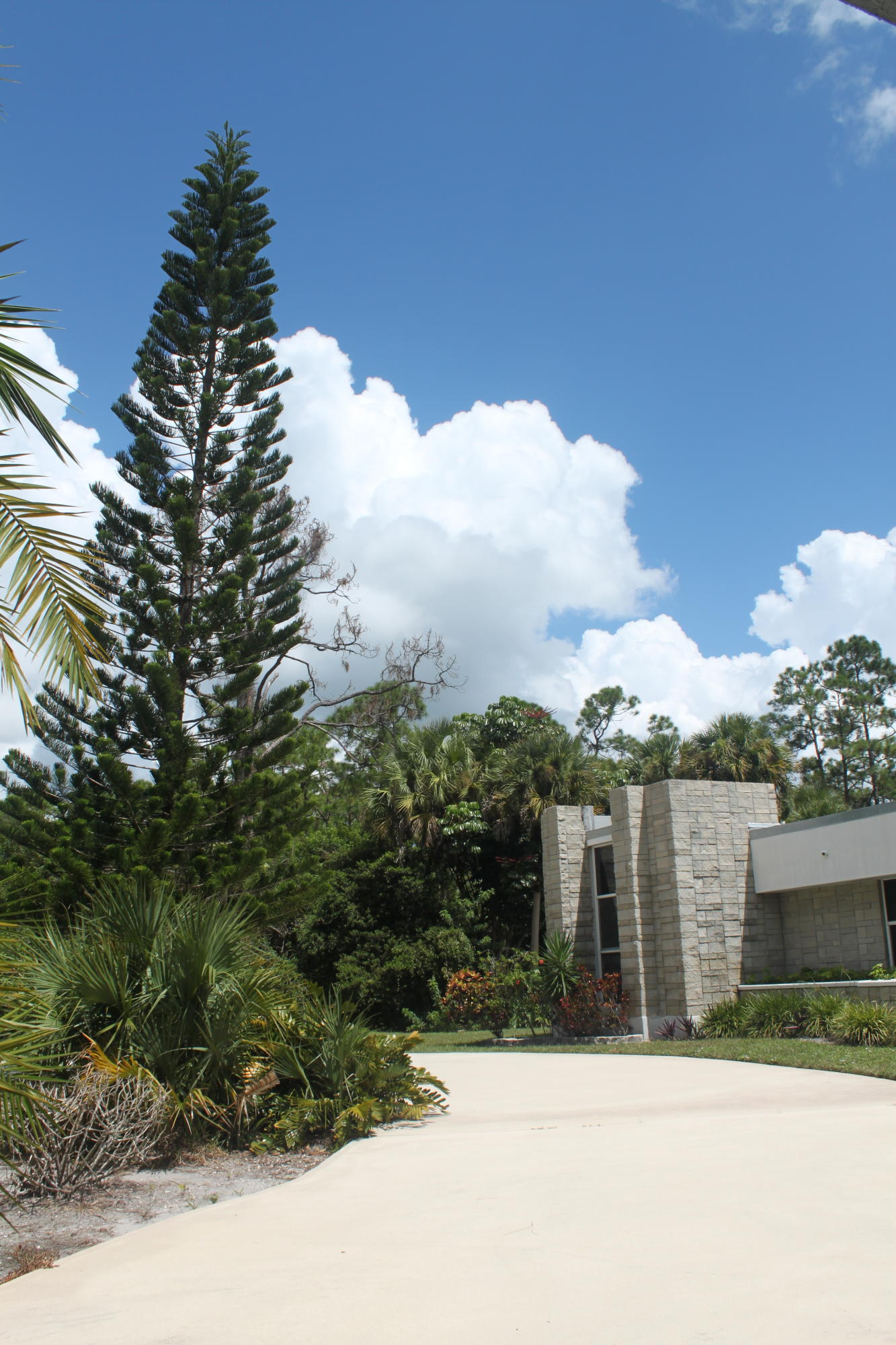 LOXAHATCHEE FLORIDA