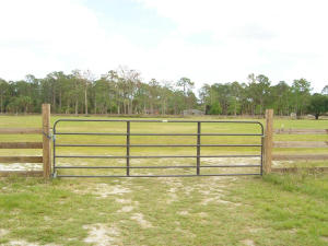 13260 COLLECTING CANAL ROAD, LOXAHATCHEE GROVES, FL 33470  Photo 16